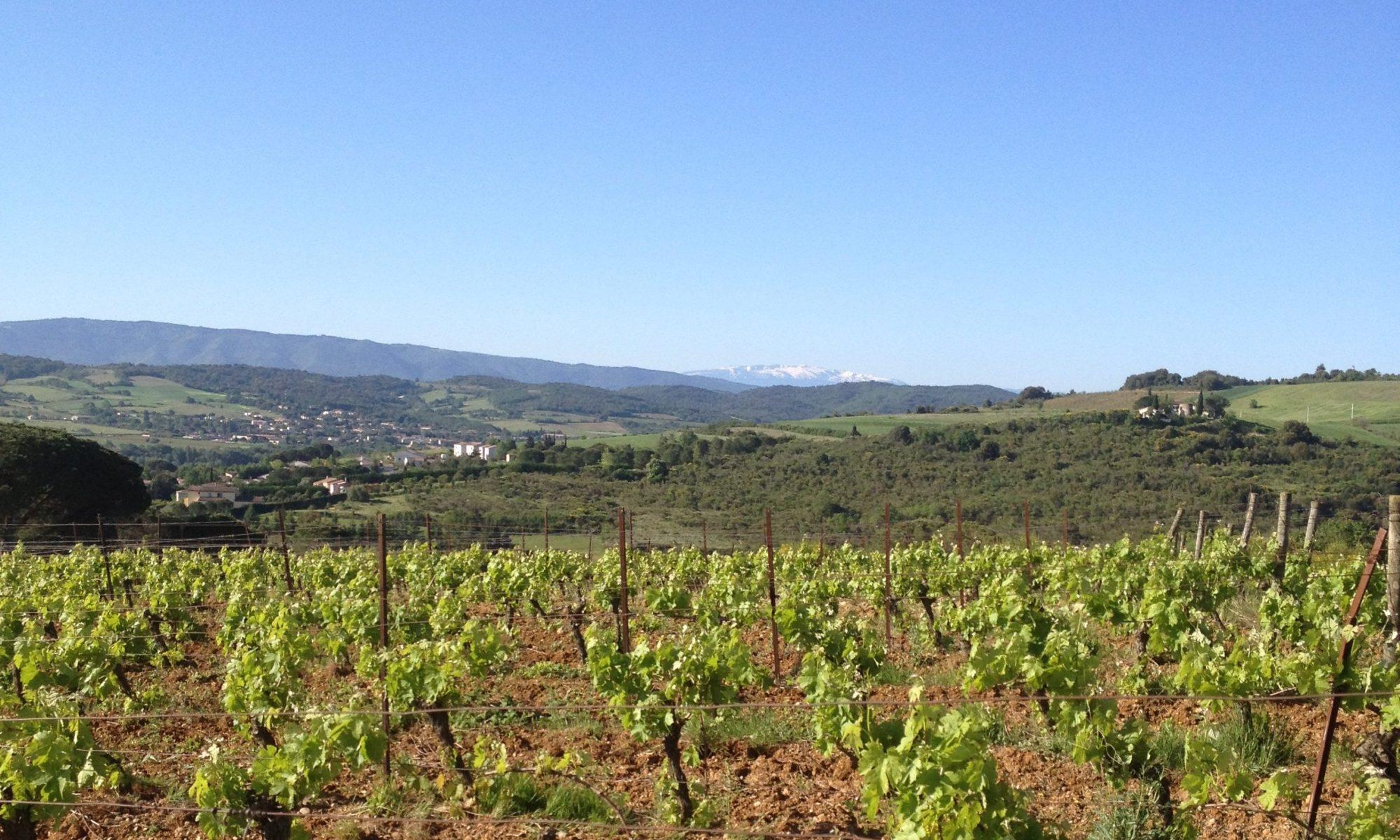 Domaine Plateau du Cascal